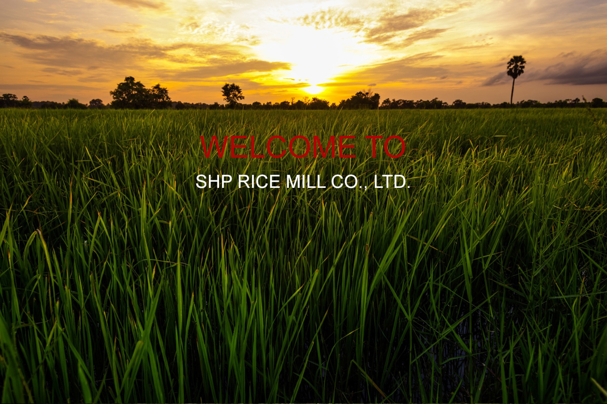YASOTHON SHP RICE MILL (1994) CO., LTD.